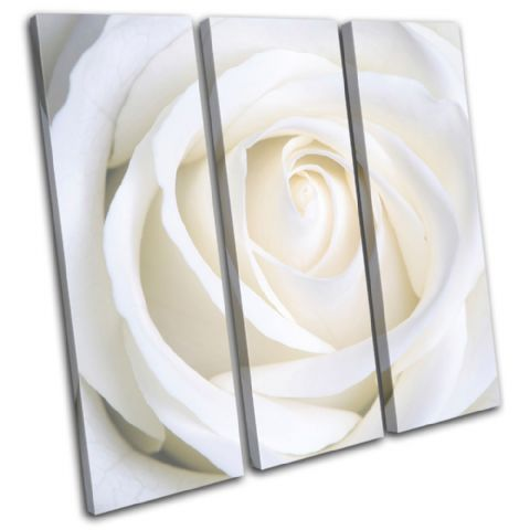 Rose Love Flowers Floral - 13-0793(00B)-TR11-LO